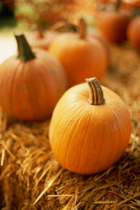 Pumpkins on Bale of Hay --- Image by © Royalty-Free/Corbis